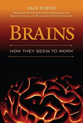 Brains: How They Seem to Work