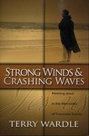 Strong Winds & Crashing Waves: Meeting Jesus in the Memories of Traumatic Events
