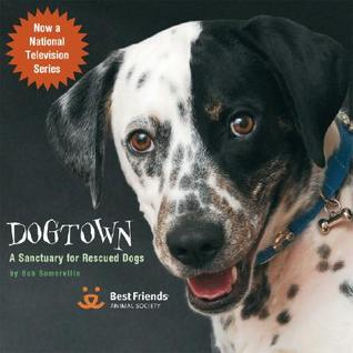Dogtown: A Sanctuary for Rescued Dogs