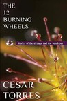 The 12 Burning Wheels