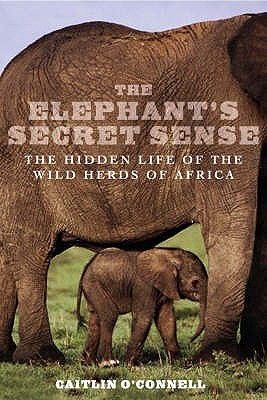 Elephants Secret Sense by Caitlin O'Connell