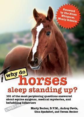 Why Do Horses Sleep Standing Up? by Audrey Pavia