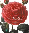 The Rose: A Colourful Inheritance
