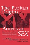 The Puritan Origins of American Sex: Religion, Sexuality, and National Identity in American Literature