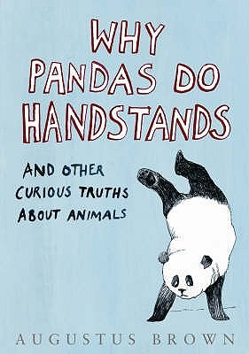 Why Pandas Do Handstands...: And Other Curious Truths About Animals