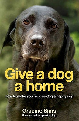 Give a Dog a Home: How to make your rescue dog a happy dog