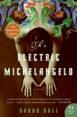 The Electric Michelangelo (P.S.)