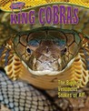 King Cobras: The Biggest Venomous Snakes of All!