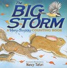 The Big Storm: A Very Soggy Counting Book