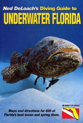Diving Guide to Underwater Florida