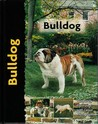 Bulldog (Pet Love)