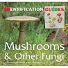 Mushrooms And Other Fungi (Identification Guides) (Identification Guides)