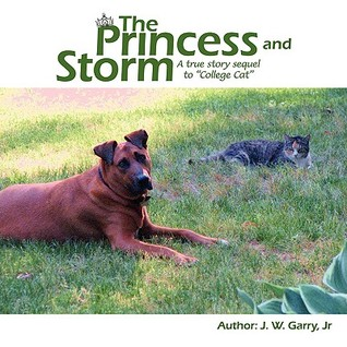 The Princess and Storm