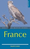 Where To Watch Birds In France (Where To Watch Birds)
