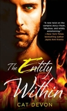 The Entity Within (Entity, #2)