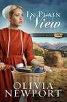 In Plain View (Valley of Choice #2)