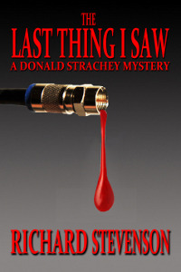 The Last Thing I Saw (Donald Strachey, #13)