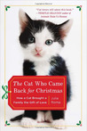 The Cat Who Came Back for Christmas- How a Cat Brought a Family the Gift of Love