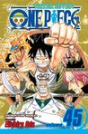 One Piece, Volume 45: You Have My Sympathies (One Piece, #45)