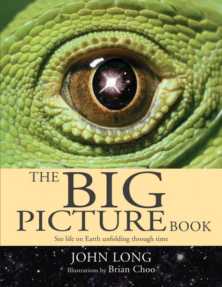 The Big Picture Book by John Long1