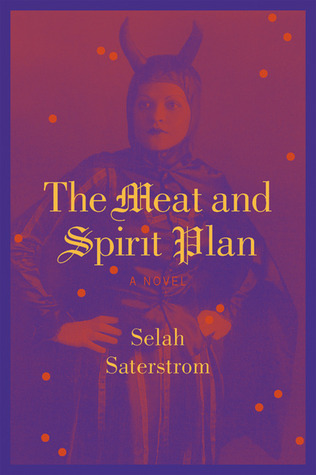 The Meat and Spirit Plan by Selah Saterstrom