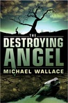 Destroying Angel (Righteous, #5)