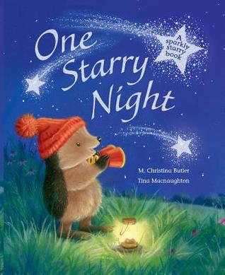 One Starry Night: A Sparkly Starry Book