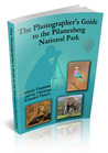 The Photographer's Guide to the Pilanesberg National Park