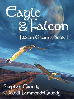Eagle and Falcon (Falcon Dreams, #1)