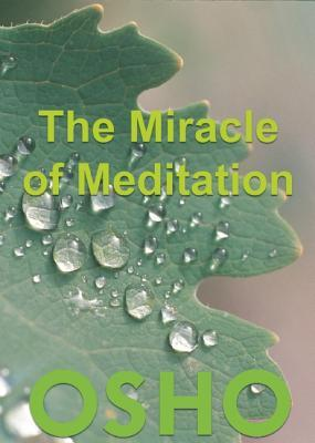 The Miracle of Meditation