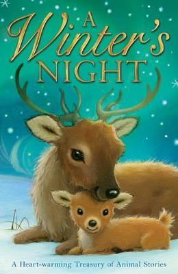 A Winter's Night. [Illustrated by Alison Edgson]