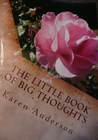 The Little Book of BIG Thoughts-Volume 2
