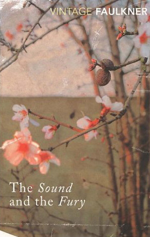 a review of william faulkners novel the sound and the fury Our reading guide for the sound and the fury by william faulkner includes a book club discussion guide, book review, plot summary-synopsis and author bio.