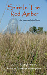 Spirit In The Red Amber, A novel of an American Indian