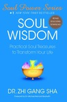 Soul Wisdom: Practical Soul Treasures to Transform Your Life (Soul Power)