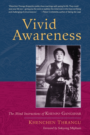 Vivid Awareness: The Mind Instructions of Khenpo Gangshar