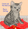 Cassie and The Wild Cat: Bug in the Rug
