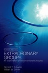 Extraordinary Groups: An Examination of Unconventional Lifestyles
