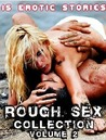Rough Sex Collection (Vol. 2): 15 Erotic Stories