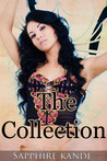 The Collection (Two Short Erotic Stories)