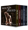 Bound and Freed Boxed Set (André Chevalier BDSM Stories, #1-5)