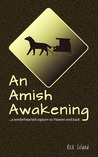 An Amish Awakening...a tenderhearted sojourn to Heaven and back