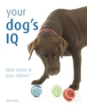 Your Dog's IQ: How Clever is Your Canine?