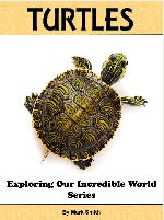 Incredible Turtles: Fun Animal Books For Kids With Facts & Incredible Photos (Exploring Our Incredible World Series #1 )