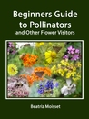 A Beginners Guide to Pollinators and other Flower Visitors