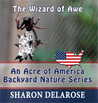 The Wizard of Awe by Sharon Delarose