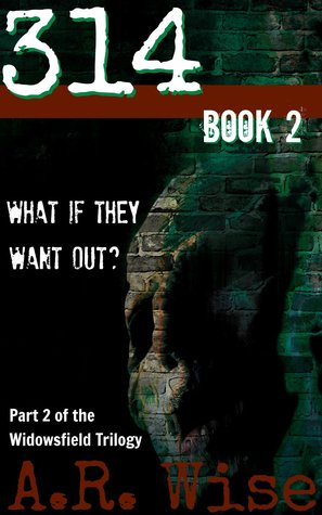 314 book 2 (Widowsfield Trilogy,#2)