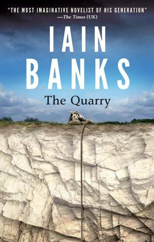 Image result for iain banks the quarry