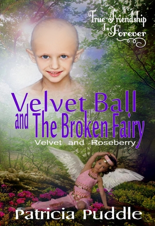 Velvet Ball and the Broken Fairy by Patricia Puddle