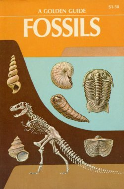 Fossils: A Golden Guide